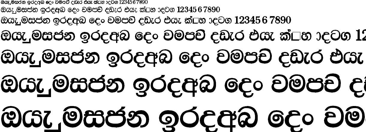 P Medi Plain Sinhala Font